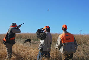 Wingshooting USA TV